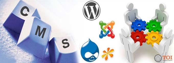 CMS web service